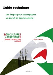 Guide technique : les étapes pour accompagner un projet en agroforesterie