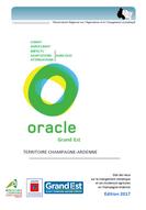 Oracle Grand Est - édition 2017